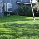 Gardener Menlo Park, Palo Alto Gardener