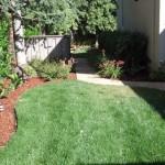 Palo Alto Landscape Contractors, Landscape Contractors Menlo Park