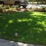 Landscape Companies In Palo Alto, Landscaping Companies Menlo Park